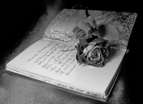 surat cinta untuk seorang pelacur
